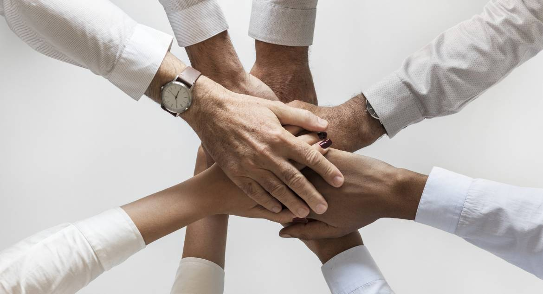 Team Mentorship